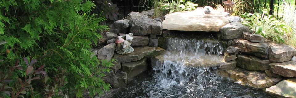 Beautiful backyard ponds!