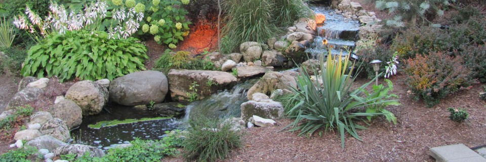 Let us create your backyard oasis!